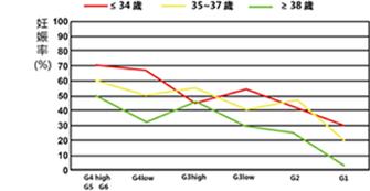 妊娠率vs年龄vs 囊胚级别