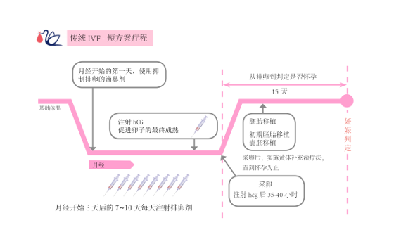 IVF 短方案
