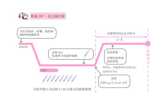 IVF 长方案