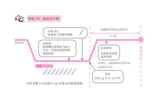 IVF 拮抗剂方案